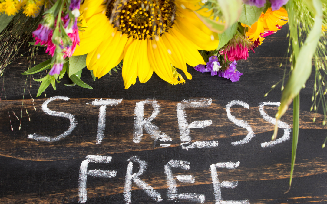 How to Have a Stress-Free Business Launch